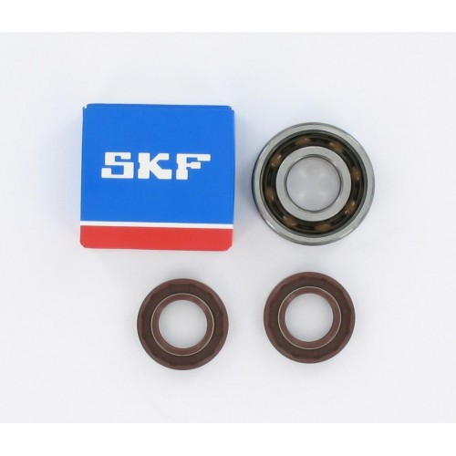 Kit roulements moteur 6204 C4 TN9 polyamide SKF - Derbi
