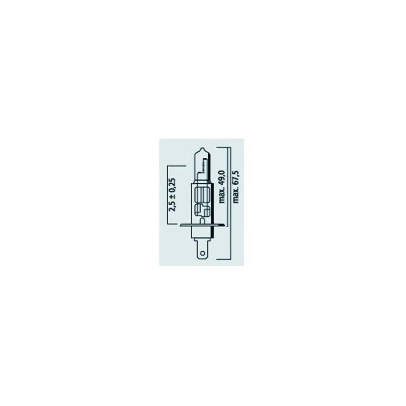 Lampe H1 12V 55W Std - P14,5s - Halogène