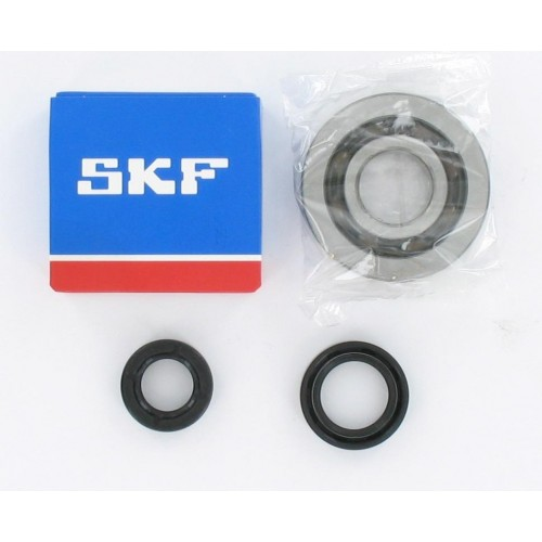 Kit roulements moteur 20x52x12 polyamide SKF / 6204 C4 TN9 SKF - Peugeot Speedfight 2 / Trekker 2